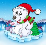 Cute Christmas bear with gifts Stock Photos
