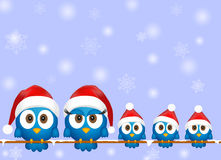 Cute christmas birds Stock Image