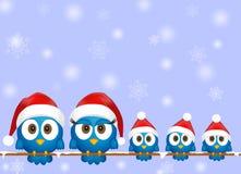 Cute christmas birds royalty free illustration