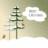 Cute christmas card with birds, finches,  Royalty Free Stock Photography