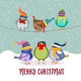 Cute Christmas card with birds vector illustration