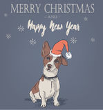 Cute Christmas card with dog Stock Image