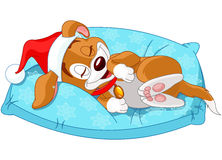 Cute Christmas doggy. Lies on the pillow stock illustration