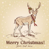 Cute Christmas hand drawn retro postcard. With beautiful santa's deer, holly berries and star backdrop. Vector illustration Royalty Free Stock Image