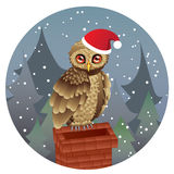 Cute Christmas Owl Royalty Free Stock Images
