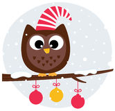 Cute christmas owl sitting on the branch Stock Photo