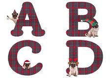 Cute Christmas pug puppy dog alphabet letters  A B C D Stock Photography