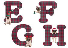 Cute Christmas pug puppy dog alphabet letters E F G H Royalty Free Stock Image