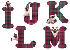 Cute Christmas pug puppy dog alphabet letters I J K L M Stock Images