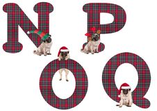 Cute Christmas pug puppy dog alphabet letters N P O Q Royalty Free Stock Image