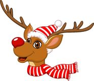 Cute Christmas Reindeer Stock Photos