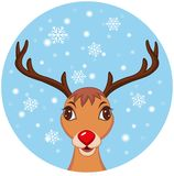 Cute Christmas Reindeer Royalty Free Stock Photos