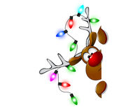 Cute Christmas reindeer Rudolf 3 Royalty Free Stock Photo
