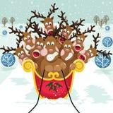 Cute Christmas Reindeer Royalty Free Stock Photo
