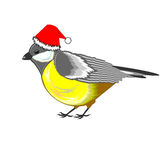 A cute Christmas titmouse isolated on a white back Royalty Free Stock Image
