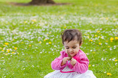Cute chubby toddler looking at a leaf curiously exploring nature outdoors in the park Stock Images