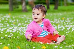 Cute chubby toddler sitting on the grass smiling exploring nature outdoors in the park Stock Photography
