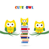 Cute and clever owl Stock Photo