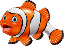 Cute clown fish cartoon. Illustration of Cute clown fish cartoon isolated on white background Stock Images