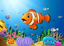 Cute clown fish cartoon in the sea. Illustration of Cute clown fish cartoon in the sea Stock Photos