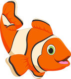 Cute clown fish cartoon Royalty Free Stock Photo