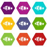 Cute clown fish icon set color hexahedron. Cute clown fish icon set many color hexahedron isolated on white vector illustration Royalty Free Stock Photos