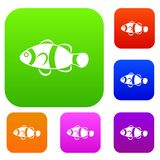Cute clown fish set collection. Cute clown fish set icon in different colors isolated vector illustration. Premium collection Stock Image