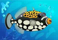 Cute  Clown Trigger Fish in Cartoon Style on a Blue. Underwater background. Vector. Stock Photo
