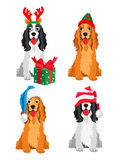 Cute Cocker Spaniel in a New Year hat Stock Photography