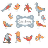Cute collection of funny birds Royalty Free Stock Photo