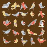 Cute collection of funny birds Royalty Free Stock Image