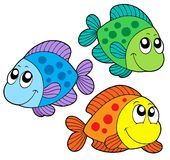 Cute color fishes Stock Images