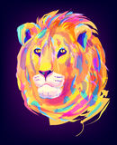 The cute colored lion head. The lion head on black background. Retro design graphic element. This is illustration ideal for a mascot and tattoo or T-shirt Royalty Free Stock Photos