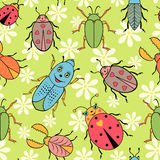 Cute colorful beetles royalty free illustration