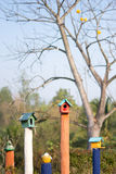 Cute colorful bird houses with tree background Royalty Free Stock Photos