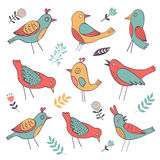 Cute colorful birds collection Royalty Free Stock Image