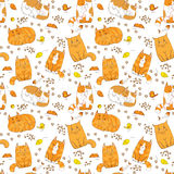Cute colorful cats seamless pattern. Pets vector background Royalty Free Stock Image