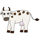 Cute colorful cow  on the white background Royalty Free Stock Image
