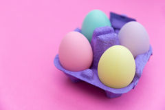 Cute colorful easter eggs in carton box on pink background. Cute easter eggs in carton box stock image