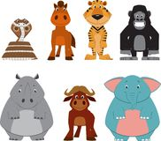 Cute colorful exotic animals collection Stock Image