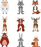 Cute colorful exotic animals collection Royalty Free Stock Photography