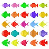 Cute colorful fish icons set in flat style. Tropical fish, sea and aquarium fish set isolated on white background. Vector illustration Royalty Free Stock Photo