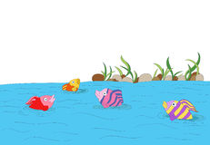 Cute colorful fishes Stock Photography