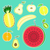 Cute colorful half fruit stickers set. Bright summer fruits split in a half Stock Photo