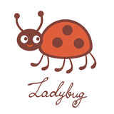 Cute colorful ladybug character Royalty Free Stock Photography