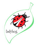 Cute colorful ladybugs clip art on white background Stock Photo