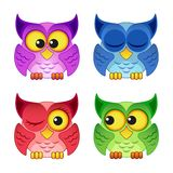 Cute colorful owls. Isolated on white background Stock Photos