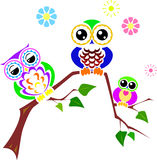 Cute colorful owls sitting on branch Stock Photos