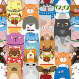 Cute colorful pattern with funny cats and dogs Stock Images