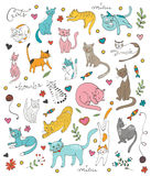 Cute colorful set  of hand drawn cats Stock Photos